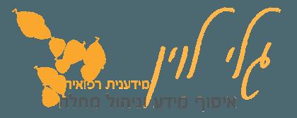 גלי לוין – מידע רפואי, ניהול מחלה